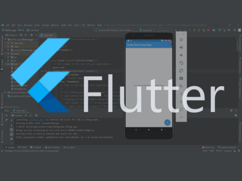 Flutter Introduction – Advantages & Disadvantages