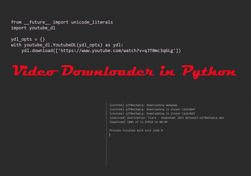 Video downloader in Python with Source code