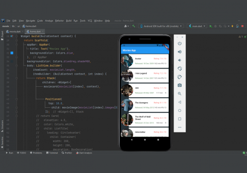 Flutter movie app with Source code